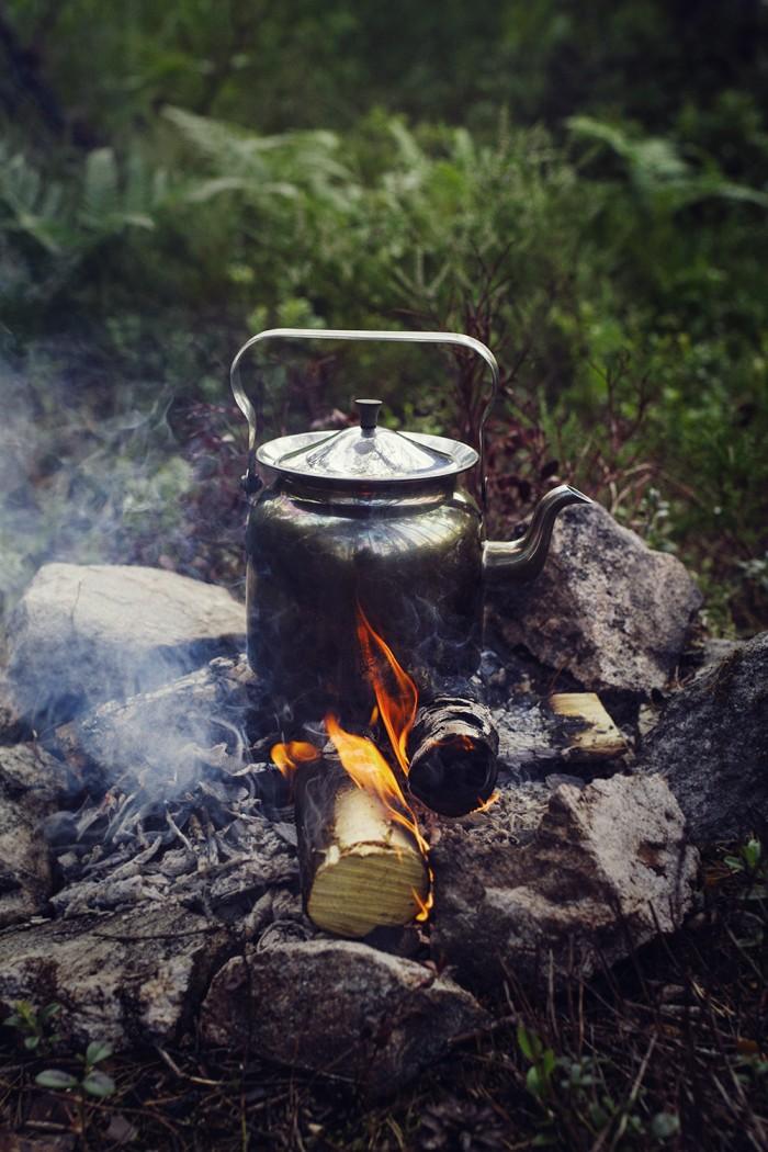 Ekologiskt kokkaffe i skogen