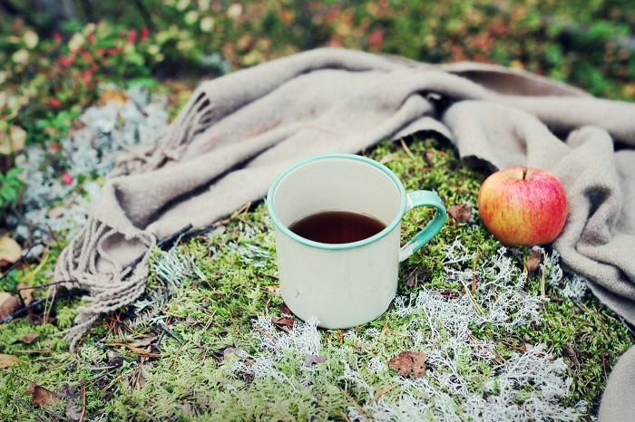 fika-i-skogen-oktober
