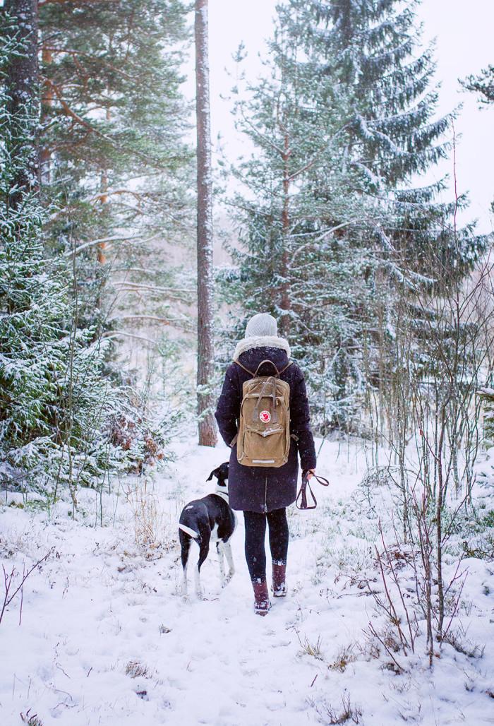 Evelinas Ekologiska - Vinter