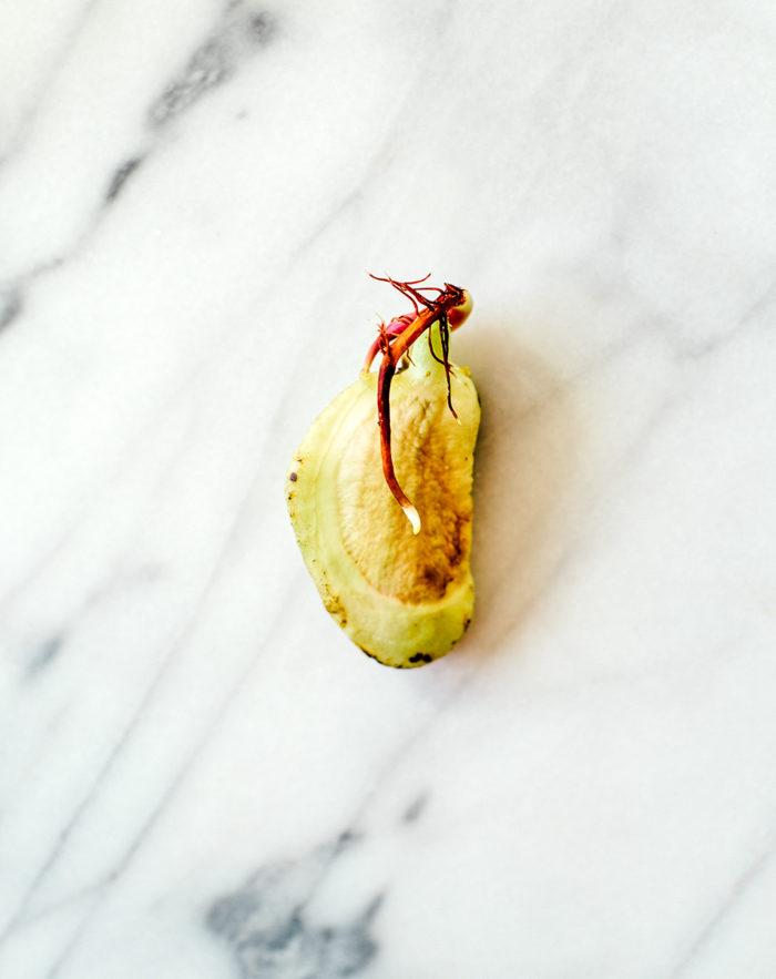 Mangokärna - Evelinas Ekologiska
